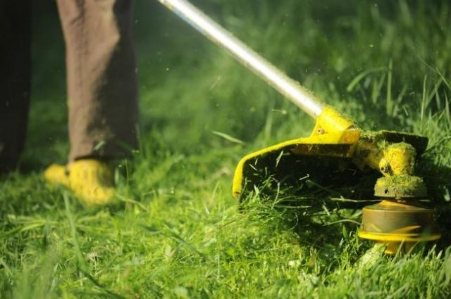 melhor aparador de grama